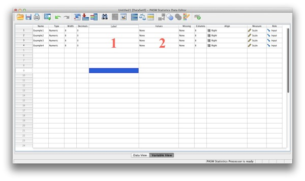Variable View SPSS No Variable/Value Labels
