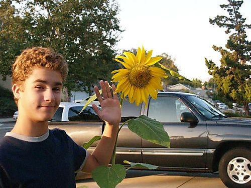 Sunflower & Jon