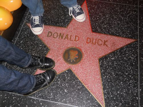 Donald duck star