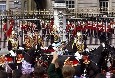 Queen 1981