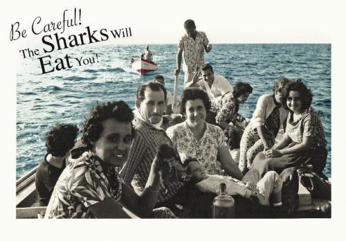 Be careful sharks