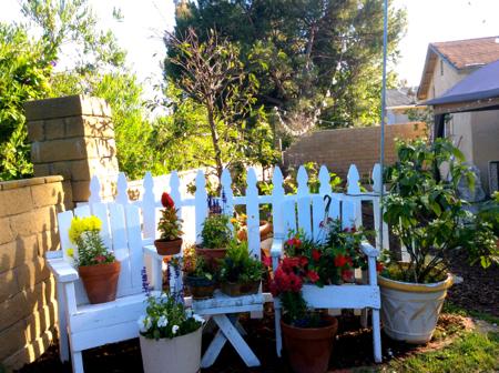 Pots-in-garden