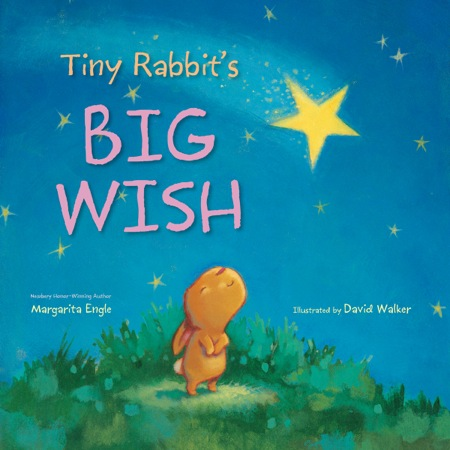 Final cover Tiny Rabbit