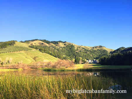 Skywalker-Ranch-across-lake-ewok-my-big-fat-cuban-family copy