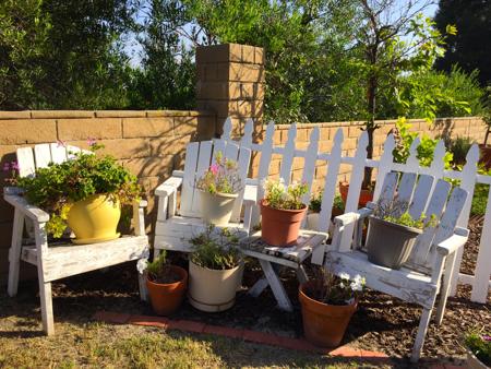 My-big-fat-cuban-family-garden-chairs
