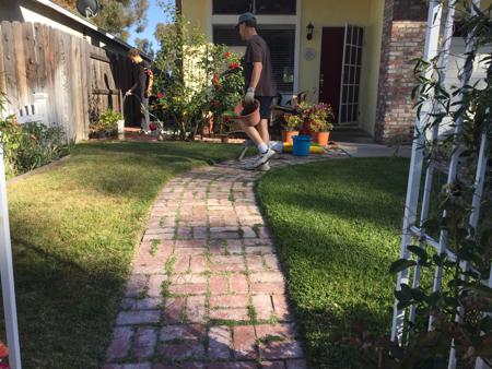 My-big-fat-cuban-family-garden