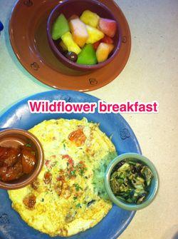 Wilflower breakfast