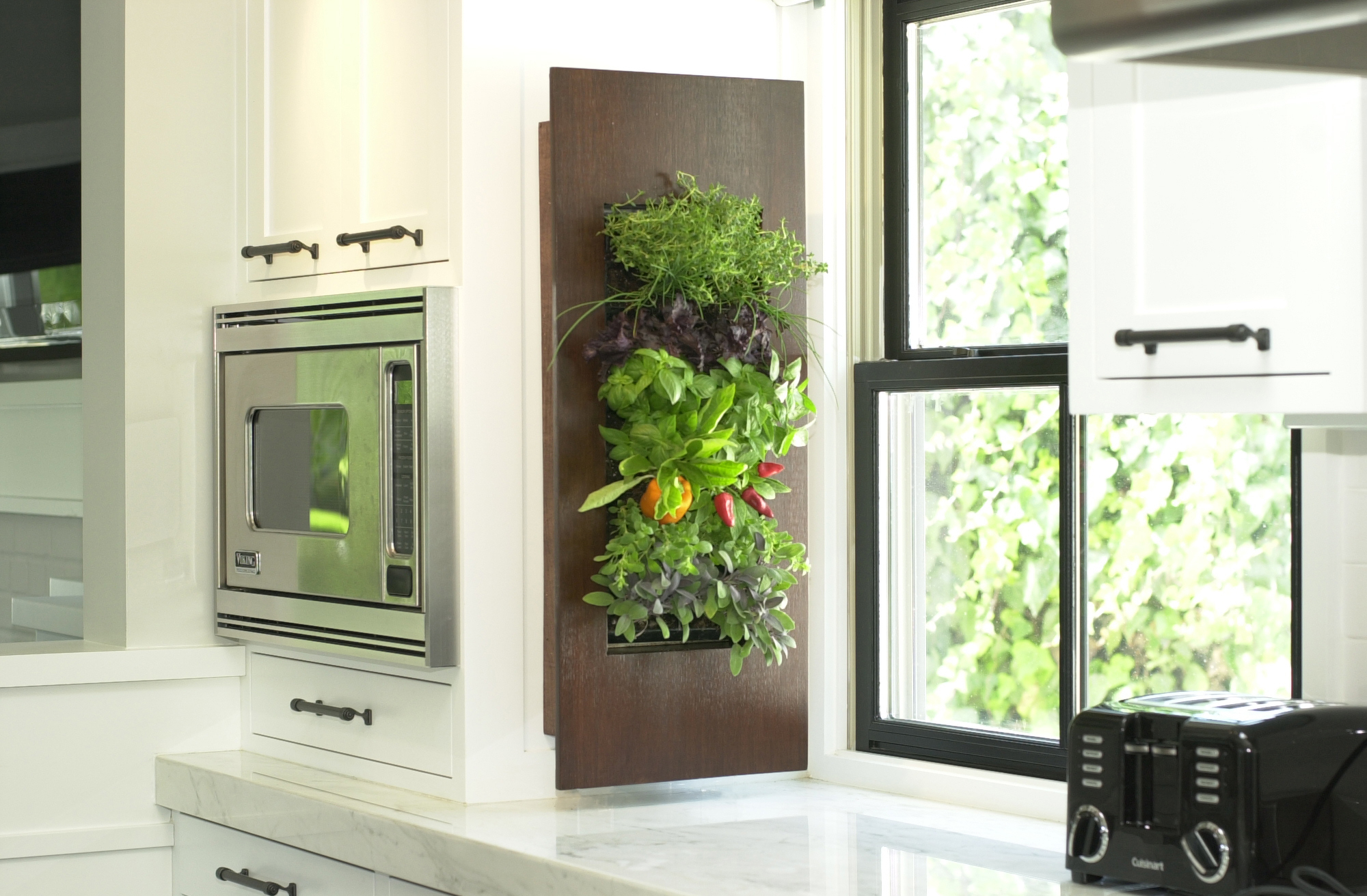 grow plants where you never thought you could - Wall Herb Garden
