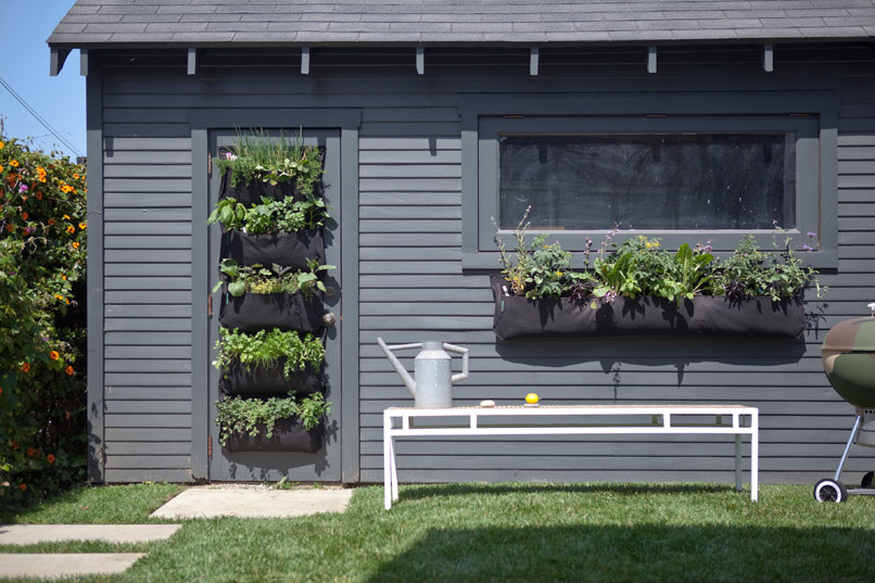 Edible Walls Shade Tolerant Gardens