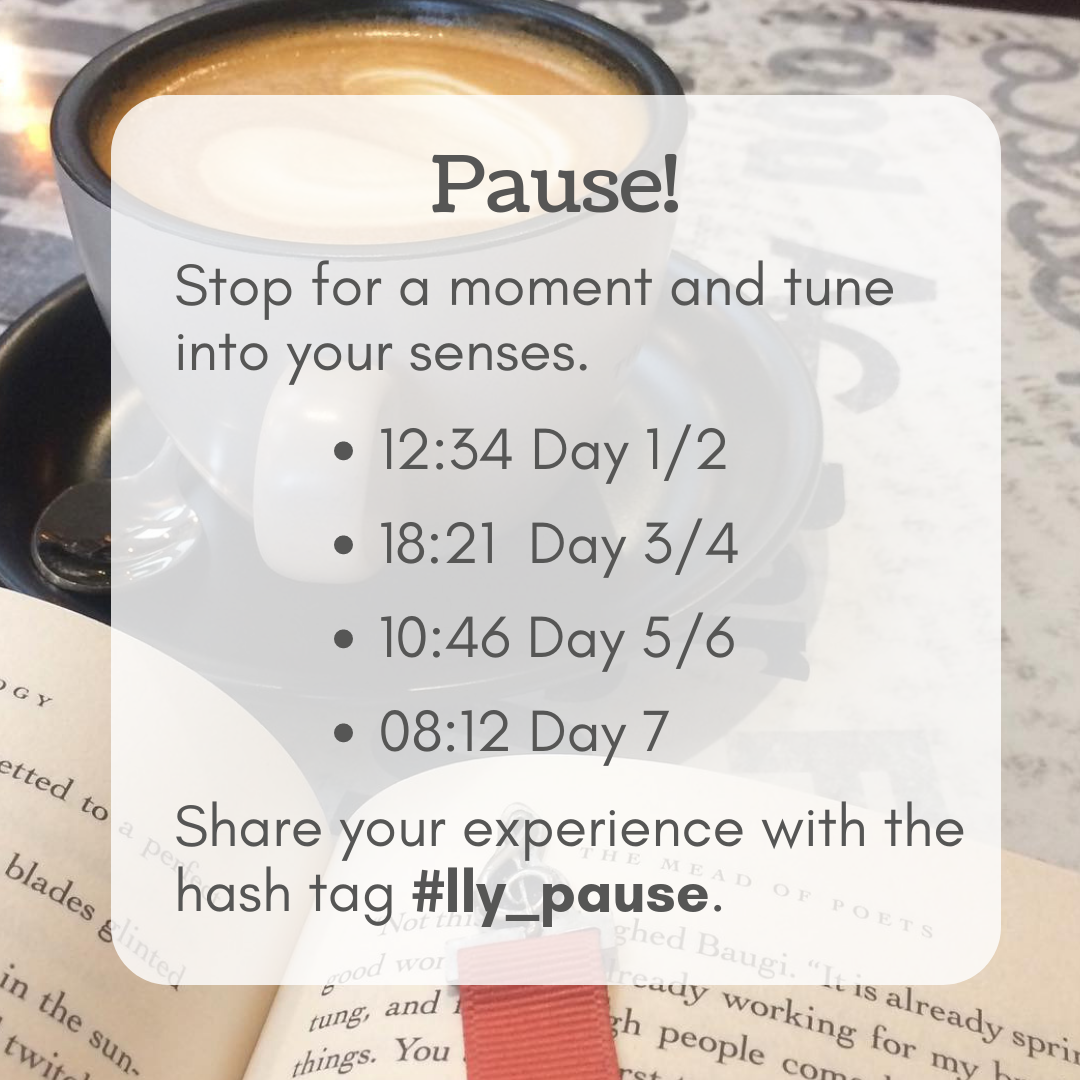 Pause! Stop for a moment and tune into your senses.