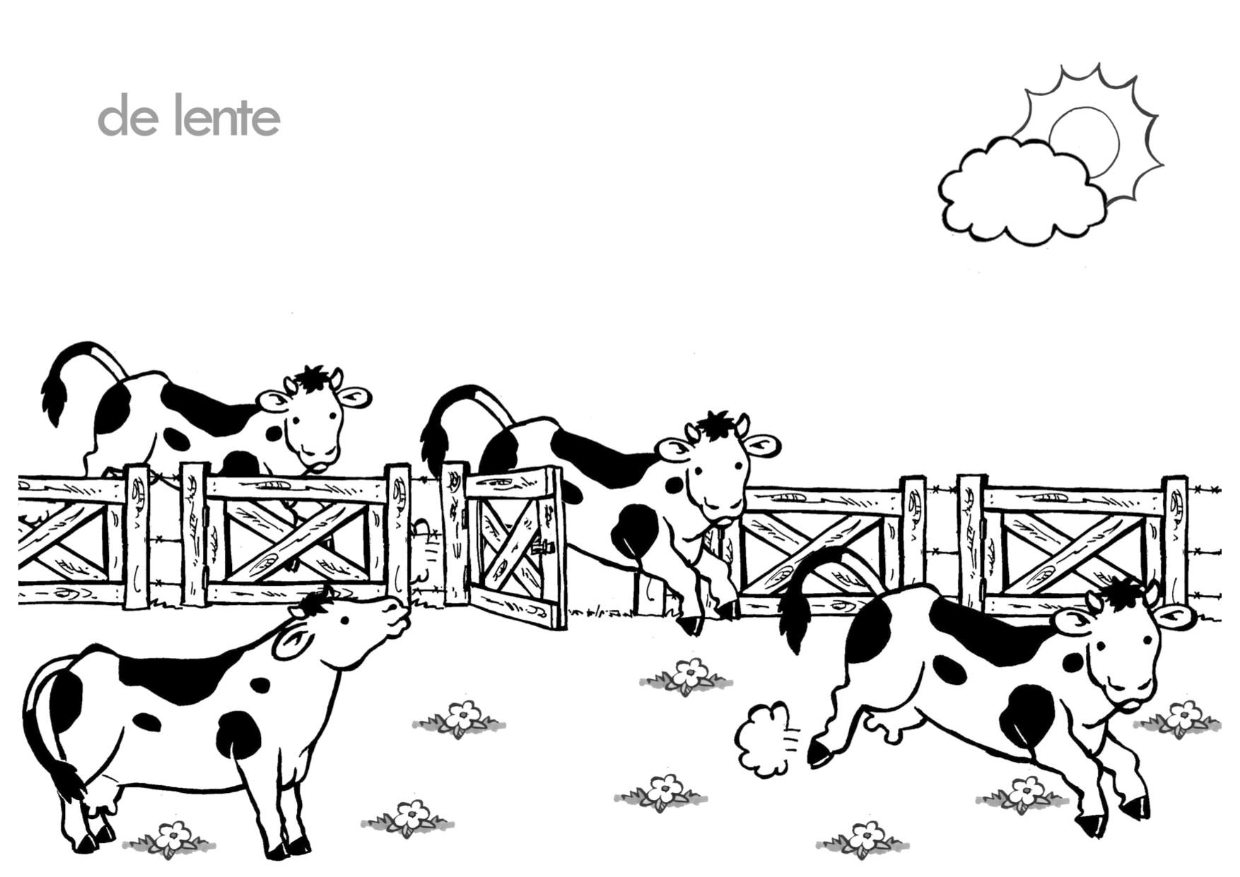 Kleurplaat Koeien In De Wei Downloads Logopediemateriaal