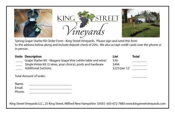 Vintner kit king street vineyards do it yourself double kit solutioingenieria Gallery