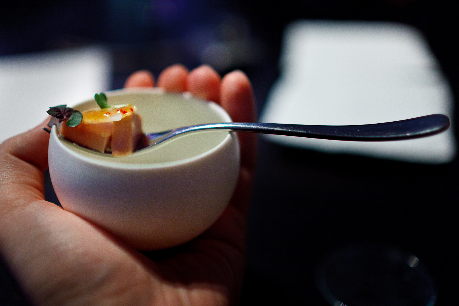 Alinea A Life Worth Eating