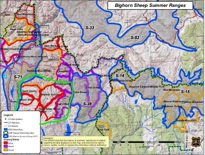 Bighorn Sheep Monitoring — Mountain Studies Institute