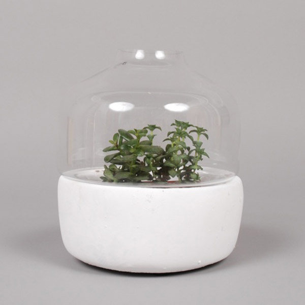 Serax_greenhouse_pot
