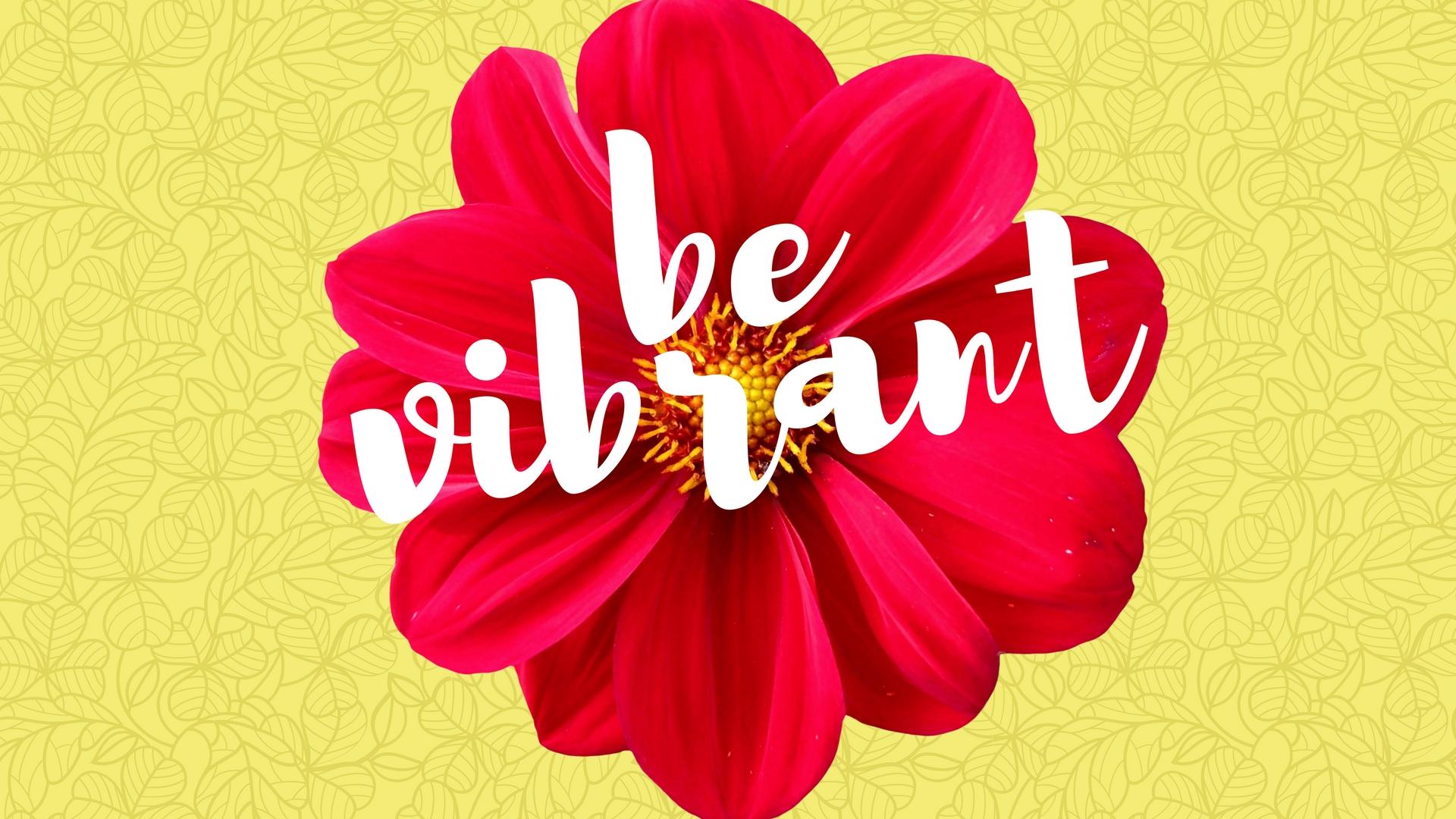 be vibrant wallpaper wednesday eryn rochelle