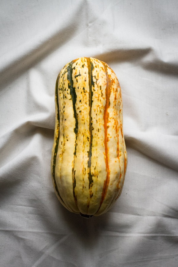 stuffed delicata squash with quinoa stuffing | edible perspective [v/gf]