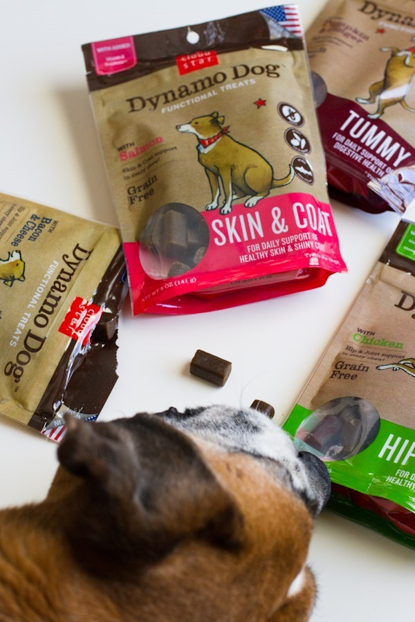 Cloud Start Dog Treats {giveaway} // edible perspective