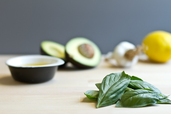 Creamy Avocado Basil Pesto | Edible Perspective