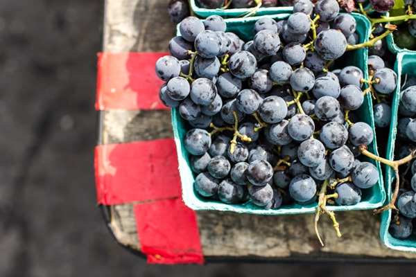 New York City   edibleperspective.com