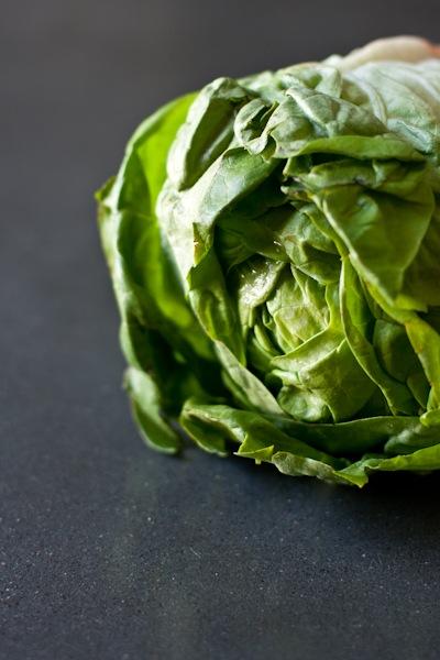 lettucetacos (2 of 9)