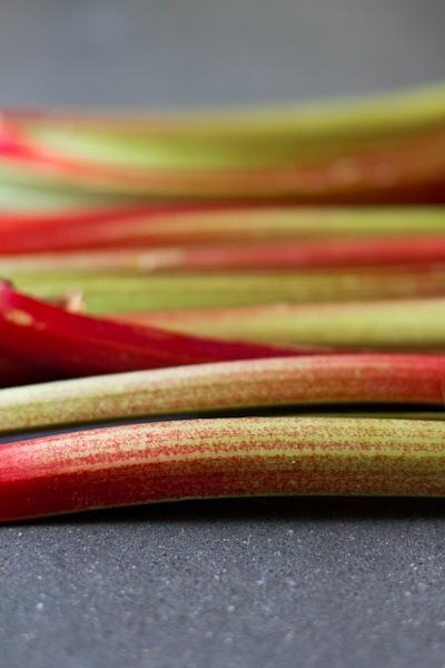 rhubarbgalette-3