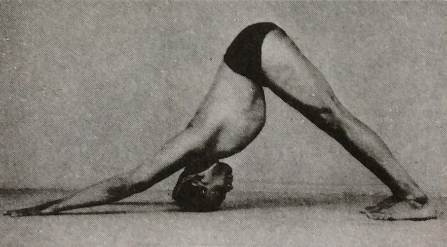 Adho Mukha Svanasana - B.K.S. Iyengar