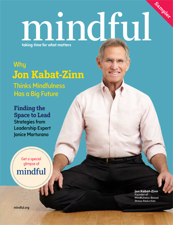 Mindful Kabat-Zinn
