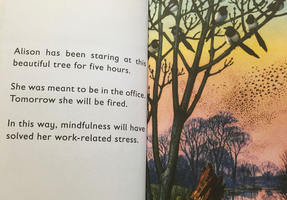 Ladybird Book