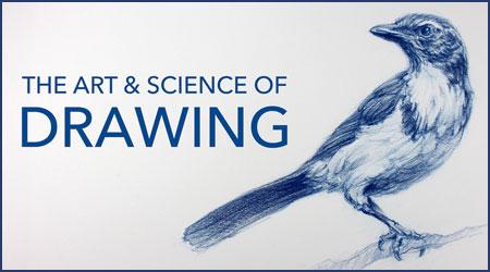 绘画的艺术和科学