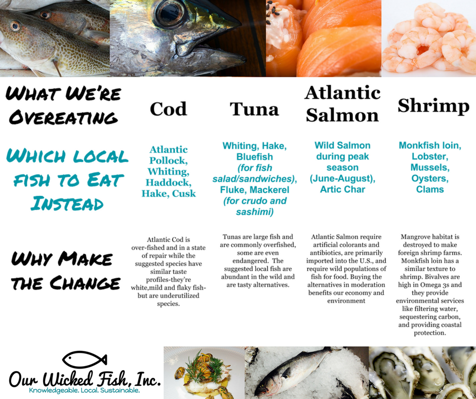 New England Seafood That's In-Season Right Now - Our Wicked Fish