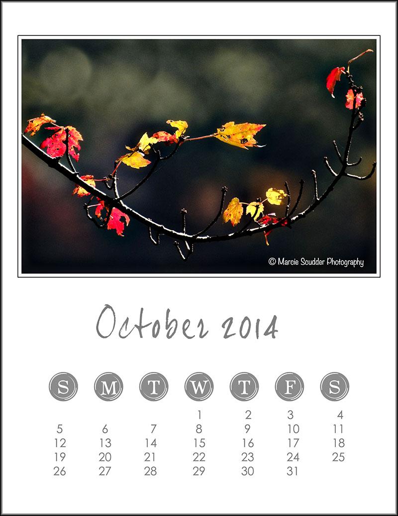 02583pxp.October_Calendar_2014