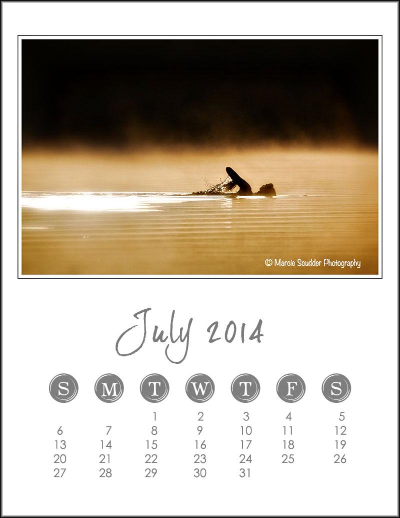 02534pxp copy.July_Calendar_2014