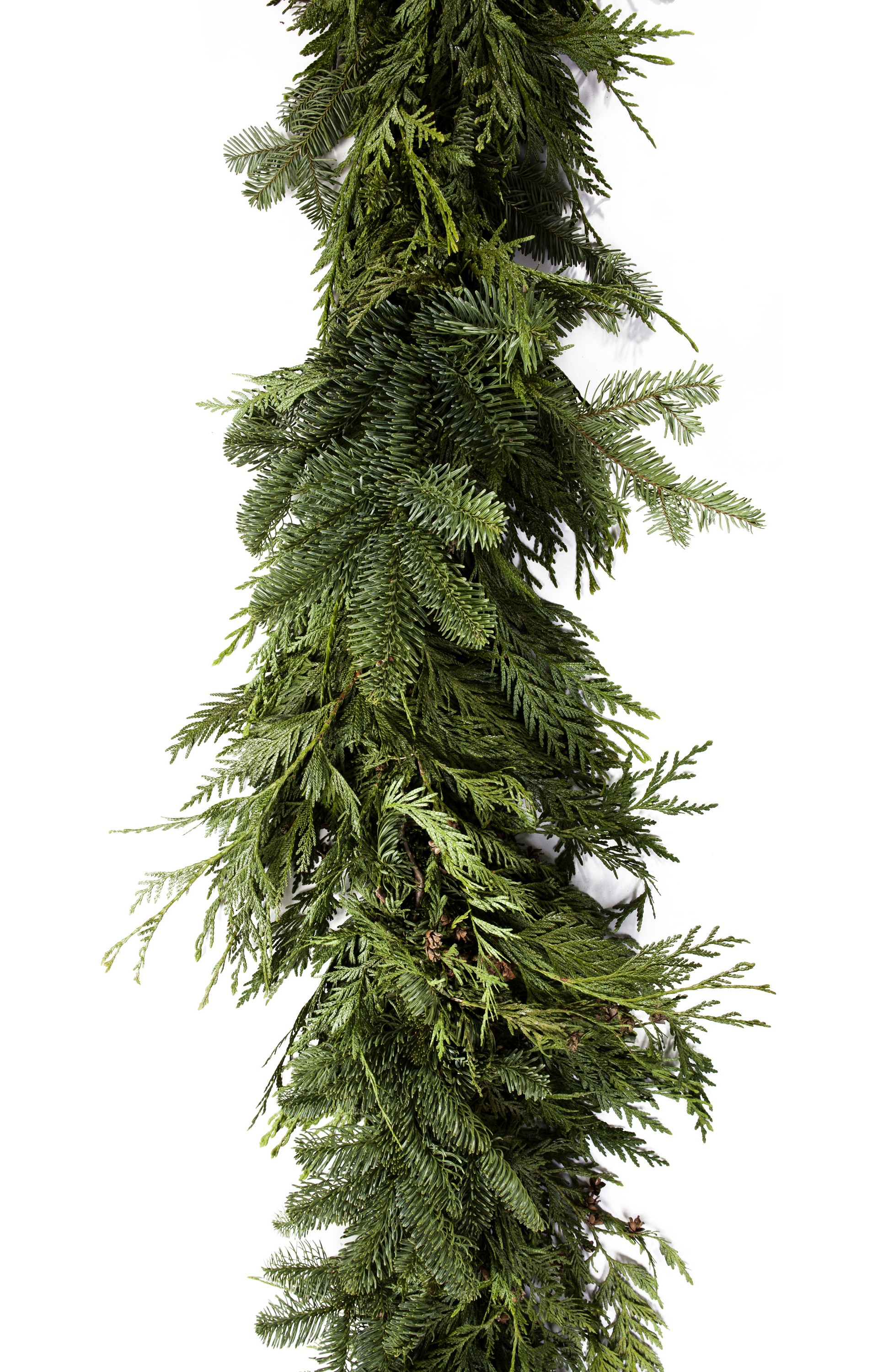 Granstrom evergreens l l c for The evergreen