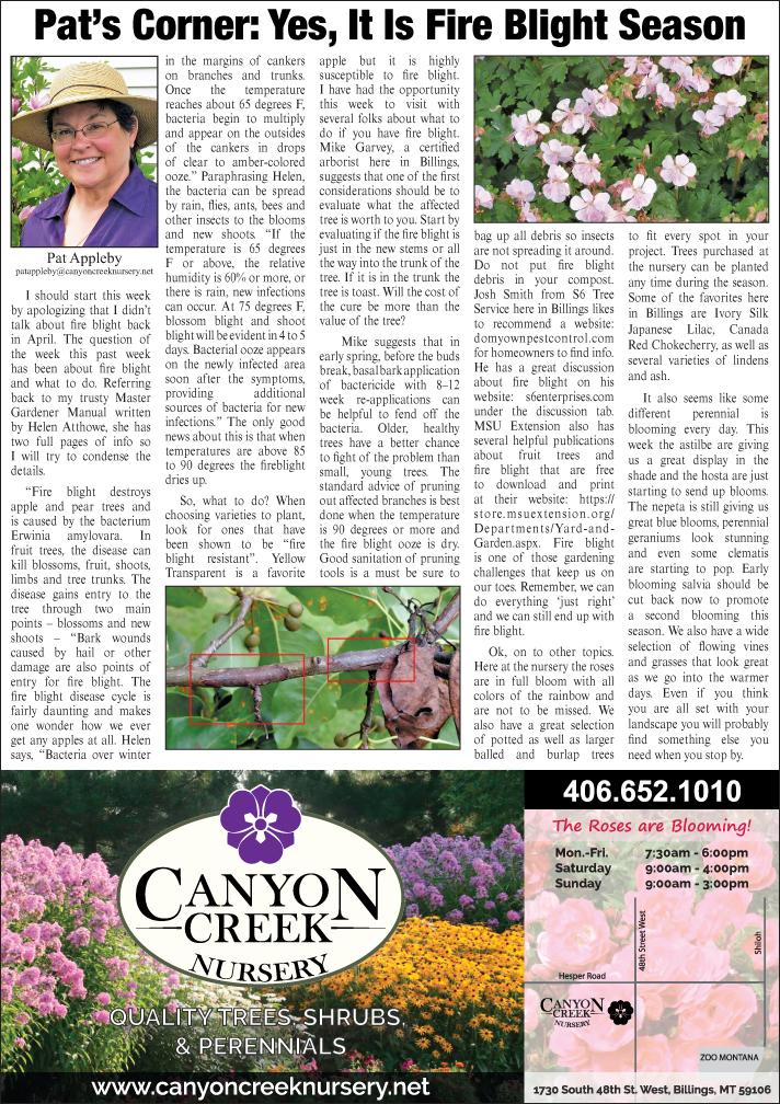 Pat S Corner Canyon Creek Nursery