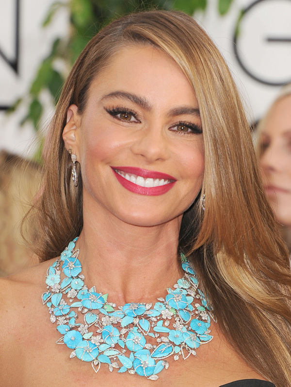 Get the Look: Sofia Vergara at the 2014 Golden Globes.