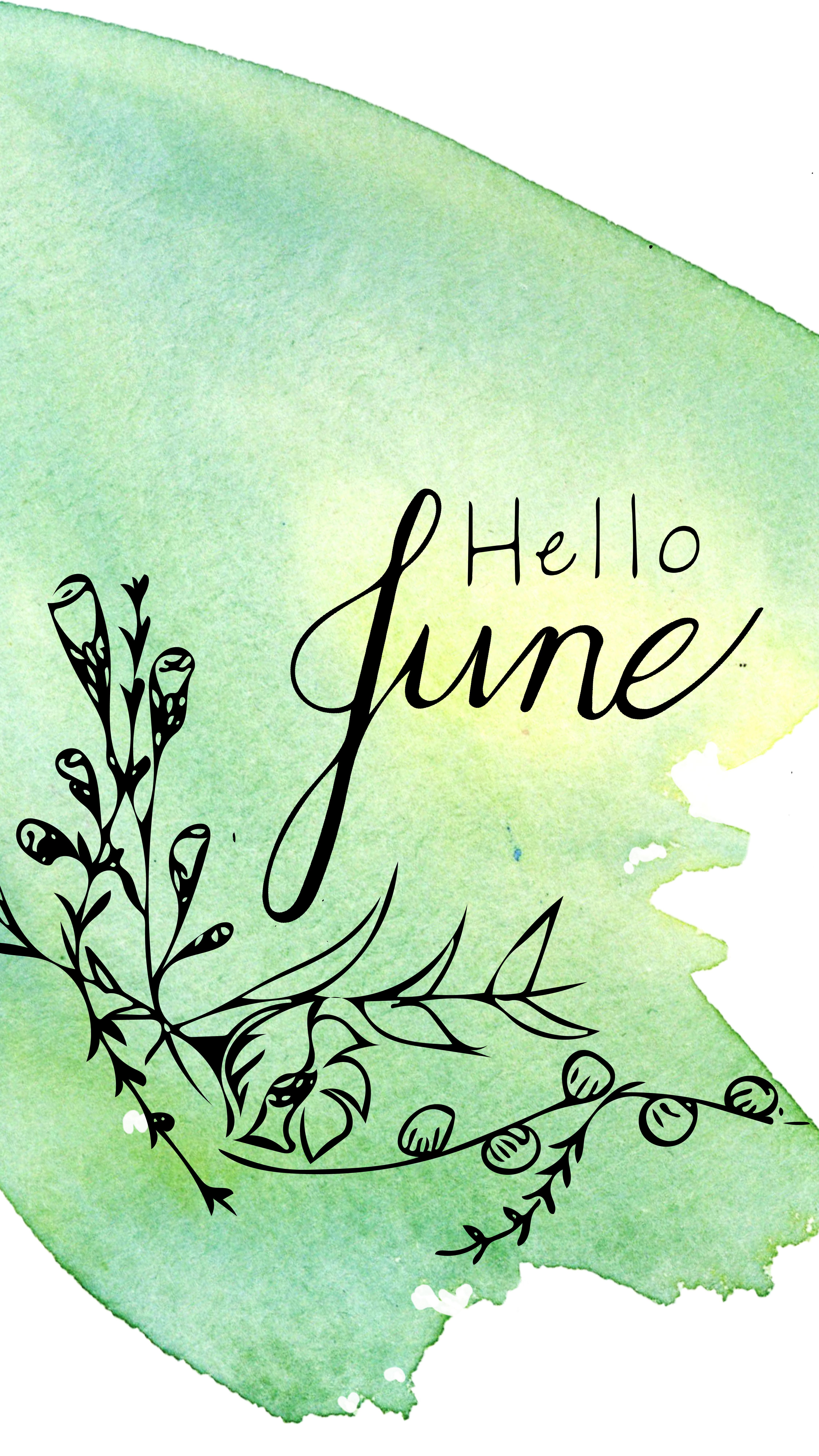Hello June Be Well Auburn