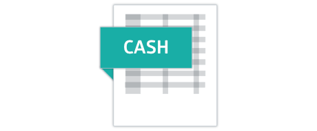 Cash accounting method report