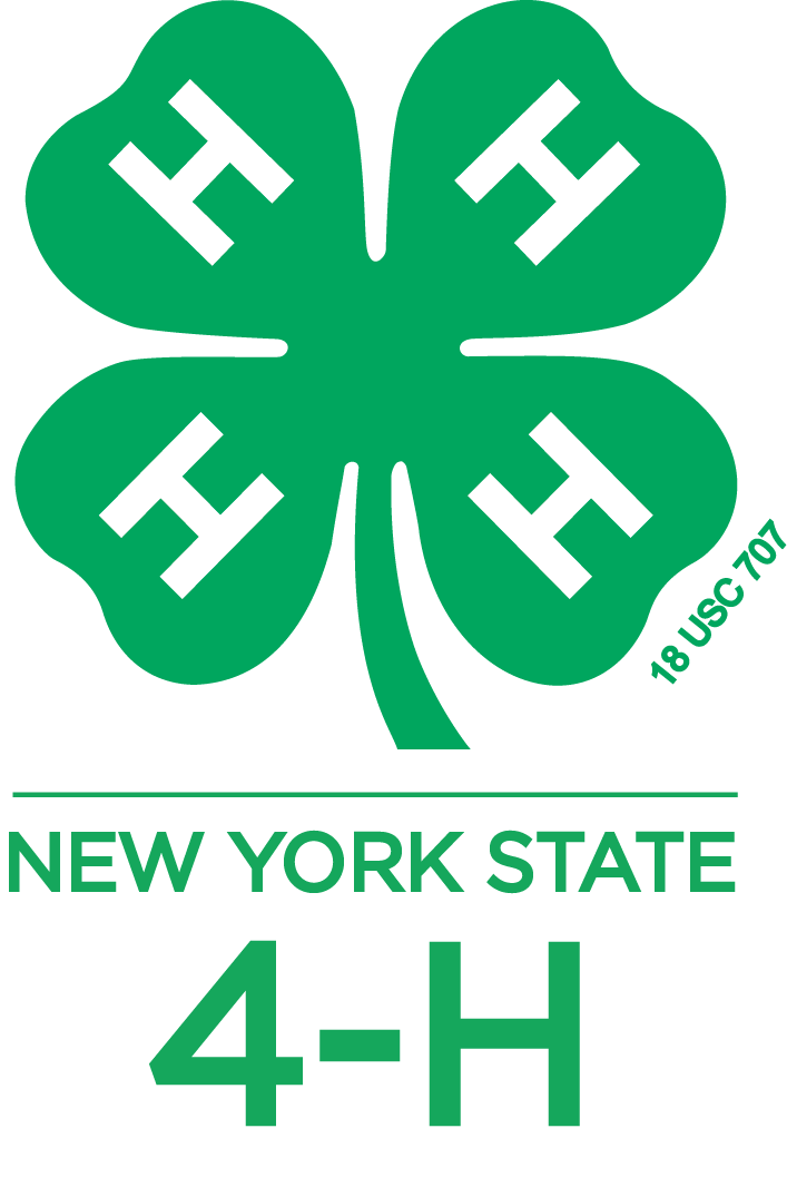 Logos Graphics New York State 4 H Youth Development