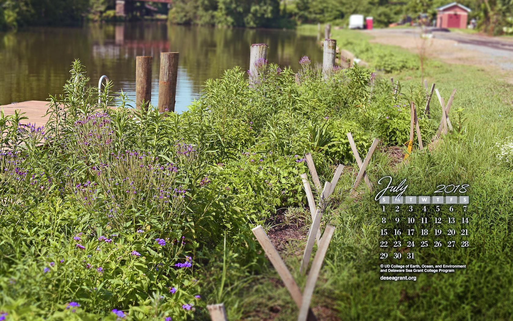 July 2018 - Living Shorelines — Delaware Sea Grant