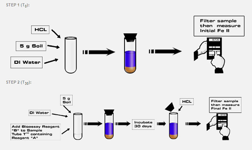 Bioavailable Ferric Iron Assay Simple Procedure