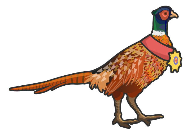 A Beauchamp Partners pheasant wearing a medal