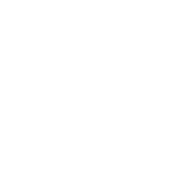 The Dever Team