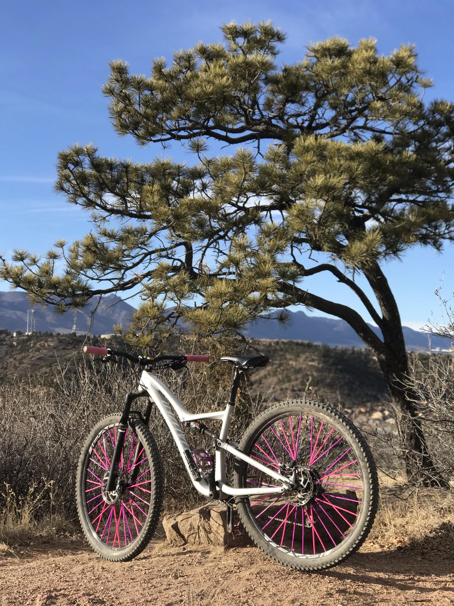 417757e467e I could ride uphill better! I could ride downhill better! I could ride  better altogether! My boyfriend helped me upgrade my bike accessories  again; ...