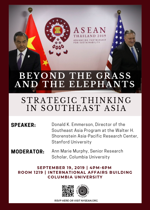 Beyond the Grass and the Elephants: Strategic Thinking in