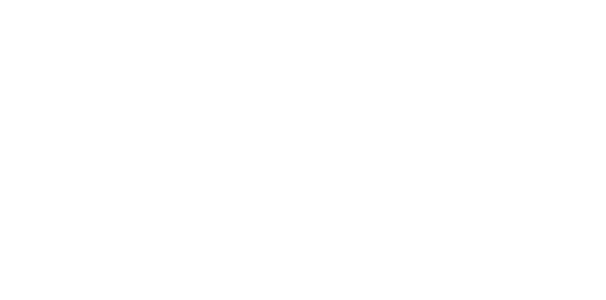 logo The XO